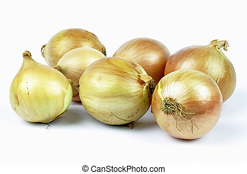 onions on the white background