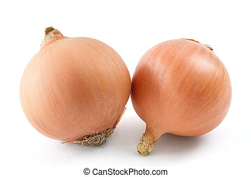 Two onions - isolated on white background