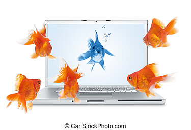 computer laptop and goldfish on white background