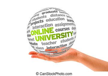 online, universiteit