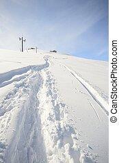 ontdekkingsreis, de alpen, door, reis, skien