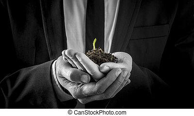 ontkiemen, zakenman, plant, vasthouden