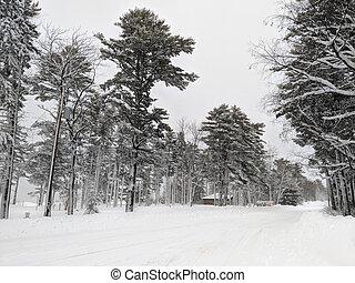 ontonagon, township, parque, nevada