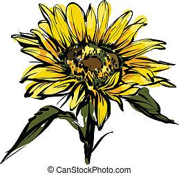 ontwerp, gele, zonnebloem