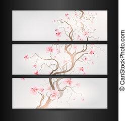 ontwerp, sakura