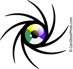oog, cyclus