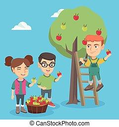oogst, kinderen, orchard., appel, appeltjes