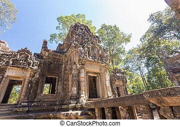 oogsten, tevoda, zeggen, thom, siem, chau, angkor, cambodia.