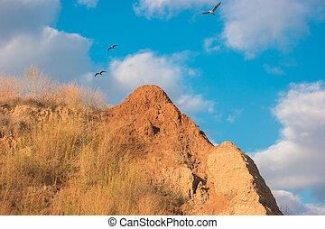 op, vliegen, mountain., vogels