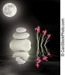 op, volle, zen tuin, maan