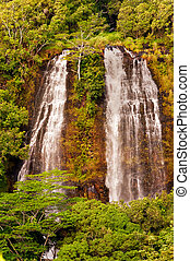 Opaeka'a Falls on Kauai Island of Hawaii