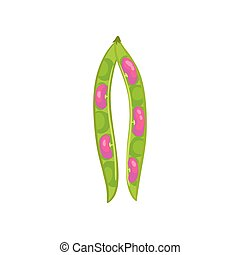 Open bean pod with pink lips. Vector illustration on white background.