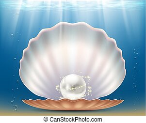 Open beautiful seashell with a precious pearl.