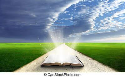 Open bible in field. - Open bible in a field with green...