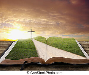 Open Bible with road. - An open Bible with a road and grassy...