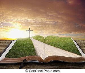 open bijbel, met, road.