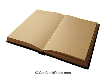 open blank book - blank journal open in vintage lighting