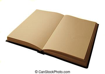 open blank book - blank journal open in vintage lighting