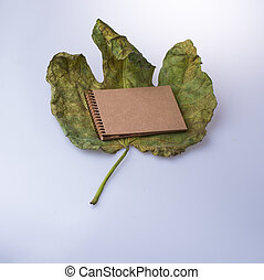 Open blank notebook on fallen autumn leaves