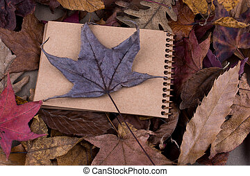 Open blank notebook with fallen autumn leaves