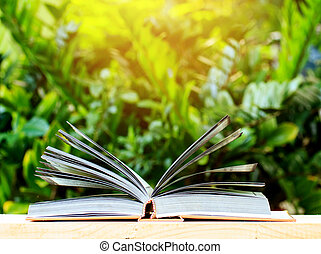 Open book with green bokeh background.