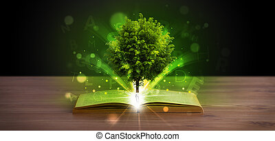 Open book with magical green tree and rays of light
