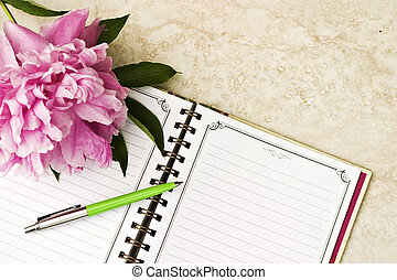 Open book with pen and romantic flowers