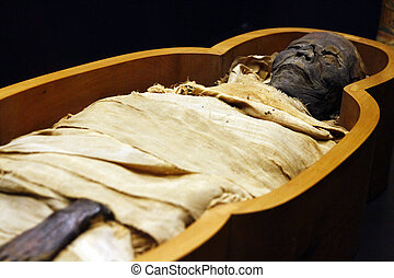Open casket of Egyptian mummy - Close view of an open casket...