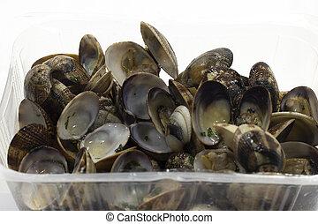 open clam shellfish seafood pasta sauce