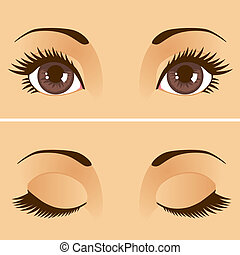 Closeup detail illustration of beautiful female brown eyes with eyelids open and closed