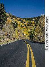 Open Colorado Mountain Road in Fall