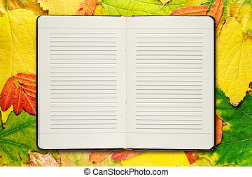 Open diary on autumn leaves background