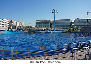 open empty dolphinarium without people daylight