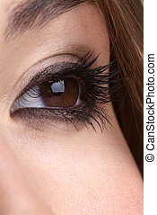 open eye - detail of a made up brown eye and brow