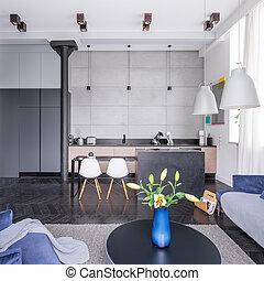 Open floor apartment