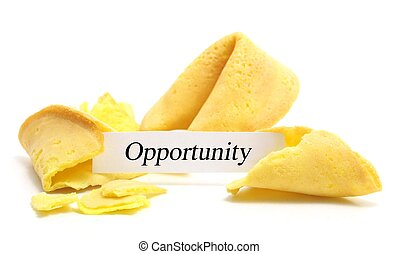 fortune cookie - open fortune cookie isolated on a white ...