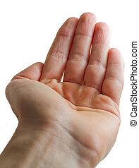 open hand, palm