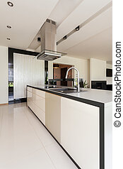 Open kitchen in modern house