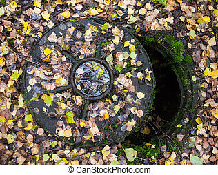 Open manhole covered with autumn leaves.