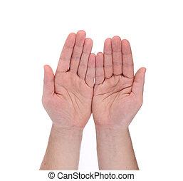 open, palm, handen, gebaar, van, mannelijke , hand.