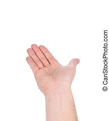 open, palm, overhandiig gebaar, van, mannelijke , hand.
