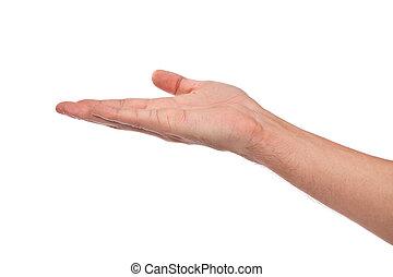 open, palm, overhandiig gebaar, van, mannelijke , hand