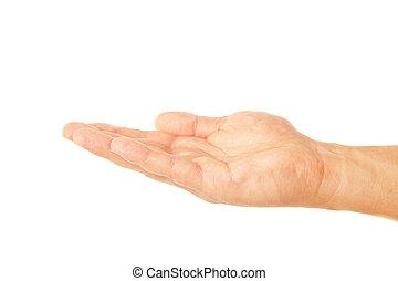 open, palm, overhandiig gebaar, van, mannelijke , vrijstaand, op wit