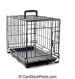 pet carrier - open pet carrier isolated on a white...