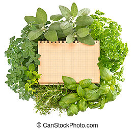 open recipe book with collection of fresh herbs