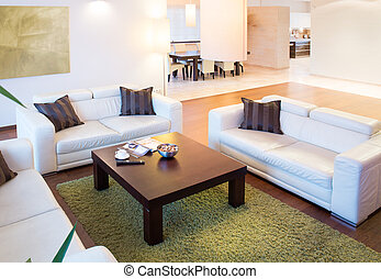 Horizontal view of open space at home