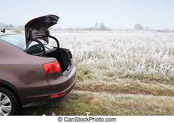 Open trunk of brown sedan