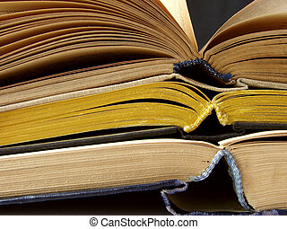 opened books 1