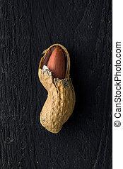 Opened Peanut Shell