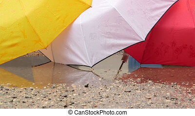 Opened wet umbrellas in the rain puddle